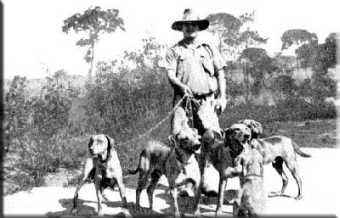 Geschiedenis Rhodesian Ridgeback